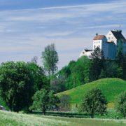 Waldburg im Sommer